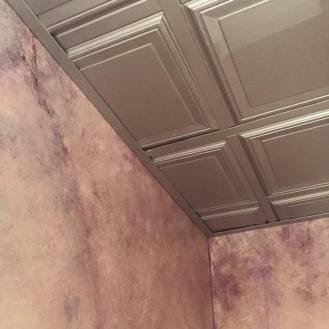 custom paint and ceiling in powder room